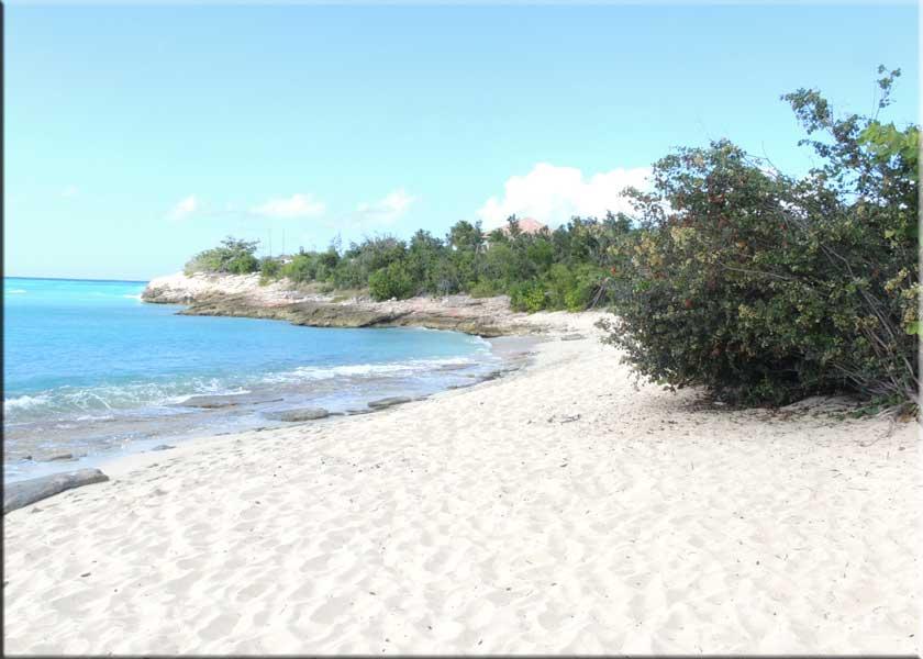 Plum Bay St Martin Beaches Maarten Sint Saint
